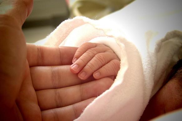 baby & adult hands