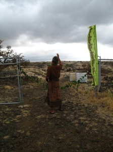 blessing the land (wdfi)